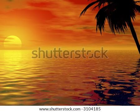 sunset and palm tree - stock photo