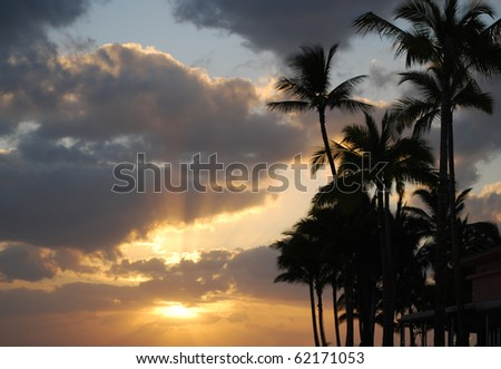 Sunset and Palm Trees on Waikiki Beach, Oahu, HI - stock photo