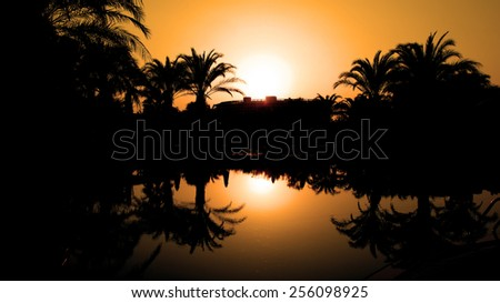 Sunset and Silhouetted Palm Trees Reflected in the Water. Travel destination.  Idyllic tropical sunset. Palm Trees Silhouetted In Bright Orange Sky Sunset.  Travel Destination. Summer Resort. - stock photo