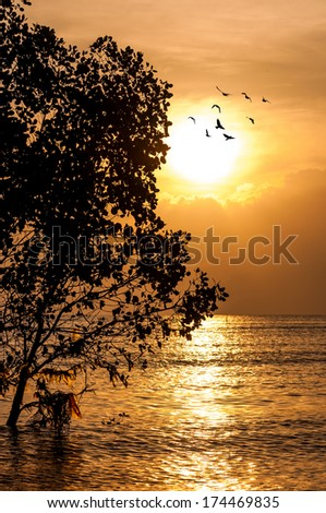 Sunset and the beach - stock photo