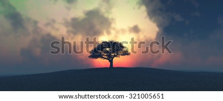 sunset and tree in  field - stock photo