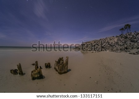 Sunset and tree stumps on a beach - stock photo