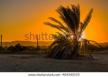 Sunset at beach in resort in Marsa Alam, Egypt - stock photo