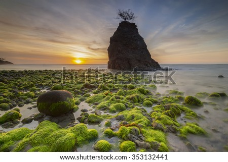 Sunset at Borneo beach at low tide exposing the mossy green rocks on the reef shelf. Malaysia. Focus to foreground - stock photo