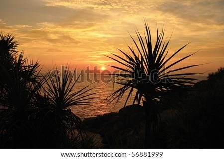 Sunset at Koh Si, Similan island, Thailand - stock photo
