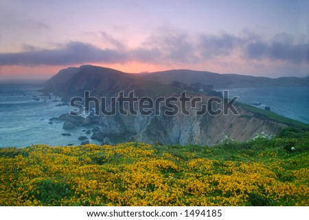 Sunset at Point Reyes, California - stock photo