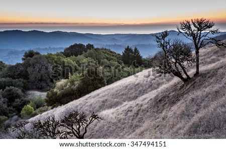 Sunset at Russian Ridge Open Space Preserve, San Mateo County - stock photo