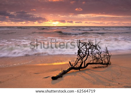 sunset at sea - stock photo
