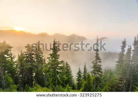 sunset at Sunrise view point  in mt Rainier national park,Wa,Usa - stock photo