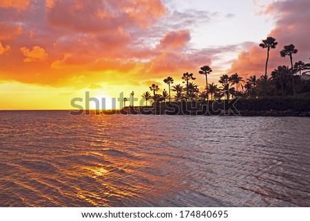 Sunset at the beach on Aruba - stock photo