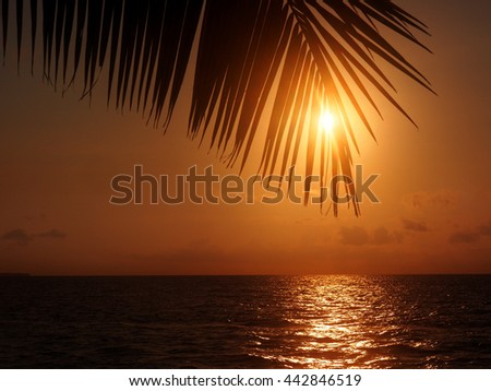 Sunset at the Kei island, Indonesia - stock photo