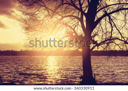 Sunset at the Lakeshore - stock photo