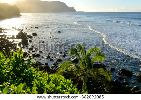 Sunset at Tropical Coast - Sunset at tropical coast of Kauai, Hawaii, USA. - stock photo