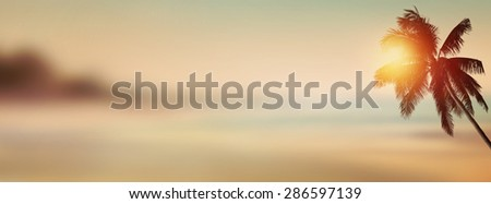 Sunset banner background. Tropical beach with coconut palm tree. - stock photo