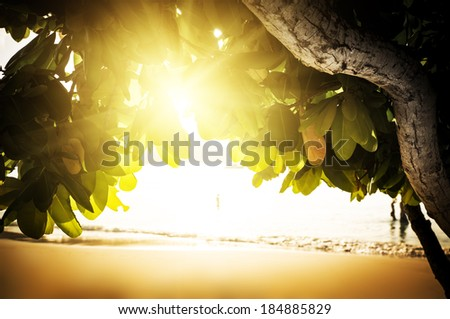 Sunset beach on Saychelles island. Mahe. - stock photo