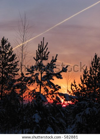 Sunset behind the winter forest - stock photo