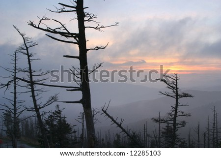 Sunset, Clingman's Dome, Great Smoky Mountains National Park, Tennessee - stock photo