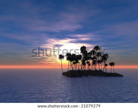 Sunset coconut palm trees on small island