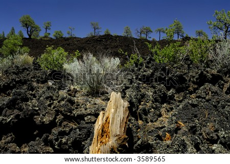Sunset Crater Lava Field - stock photo