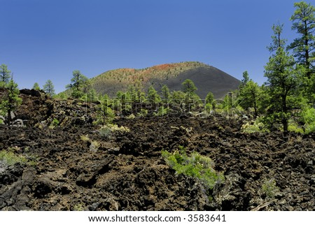 Sunset Crater Volcano National Monument - stock photo