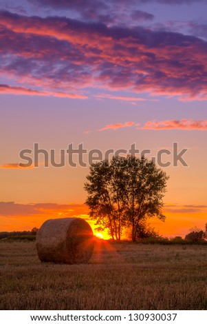 Sunset field, tree and hay bale in Hungary- this photo made by HDR technic