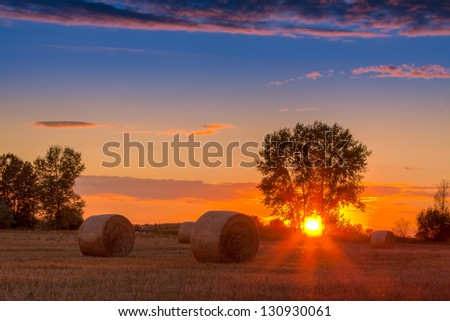 Sunset field, tree and hay bale in Hungary- this photo made by HDR technic - stock photo