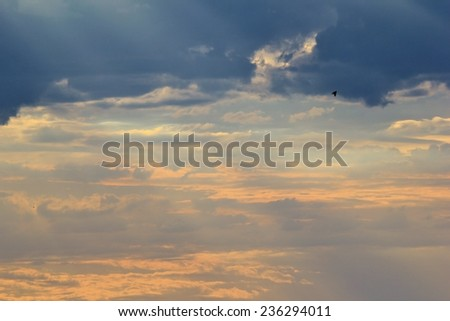 Sunset Gold - African Dusk Background - Colorful Tranquility and Peace - stock photo