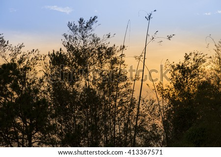 sunset golden sky background - stock photo