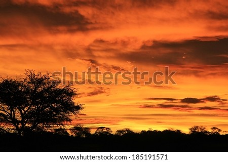 Sunset Harmony - Nature Background of Color and Beauty - Tranquility of Weather