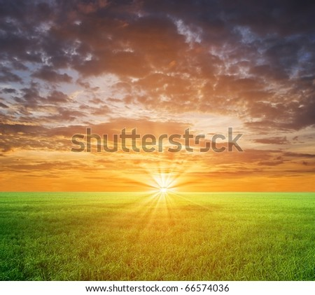 sunset in a green fields - stock photo