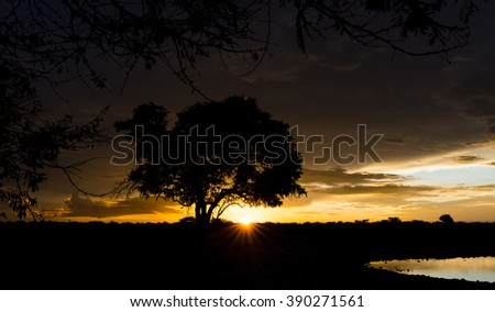Sunset in Africa with a waterhole in the front (Etosha National Park, Namibia) - stock photo