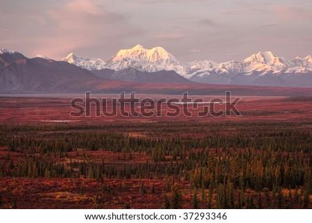 Sunset in Denali - stock photo