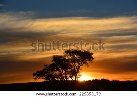 Sunset in dessert of Namibia