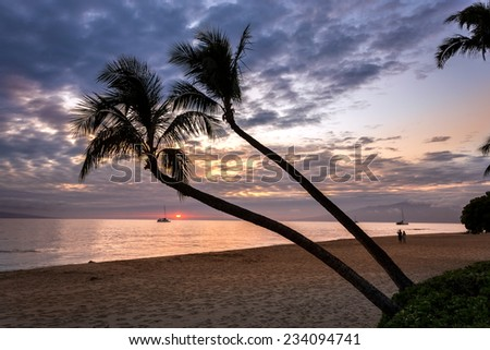 Sunset in Kaanapali, Maui with palm trees - stock photo