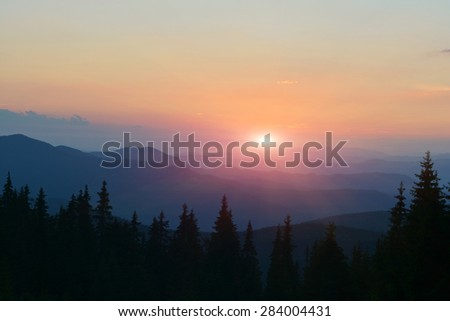 Sunset in mountains with trees silhouette on fore background