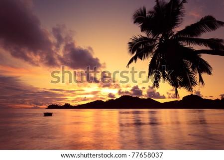 sunset in seychelles island - stock photo