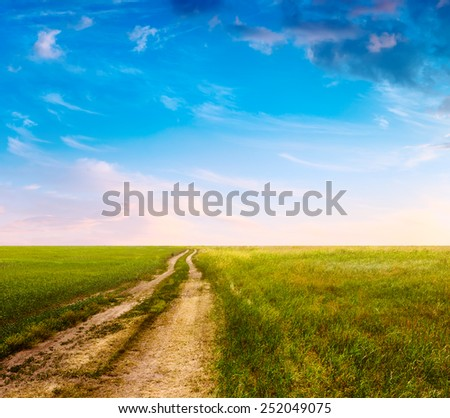 sunset in the fields, rural landscape with country road