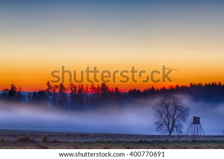 sunset in the Harz mountains, Germany