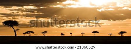 Sunset in the Masai Mara Kenya - stock photo