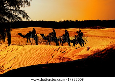 Sunset in the Sahara Desert brings the comfort of an Oasis to weary travelers for the Night, - stock photo