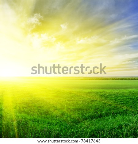 Sunset in the summer in countryside - stock photo