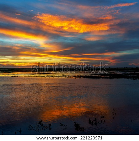 Sunset in the water world in El Cedral - Los Llanos, Venezuela, Latin America - stock photo