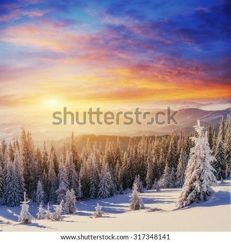 sunset in the winter mountains - stock photo