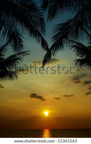 sunset in tropics - stock photo