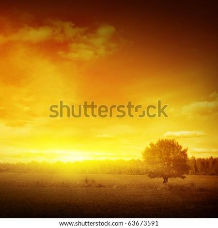 Sunset landscape. - stock photo