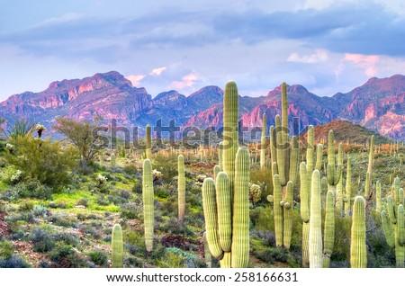 Sunset lit Butte in Hewitt Canyon, Arizona. - stock photo