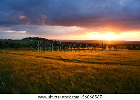 Sunset nature - stock photo