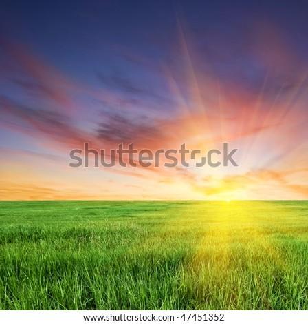 sunset on a boundless fields - stock photo