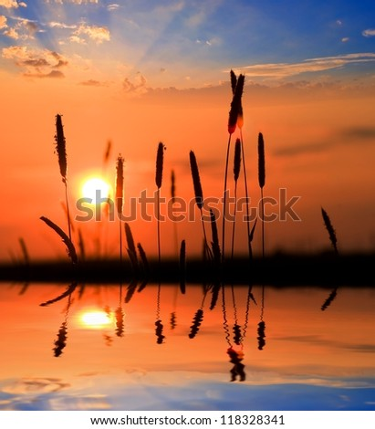 sunset on a lake coast - stock photo