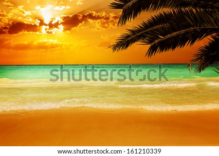 Sunset on a stunning Caribbean beach with transparent water - stock photo